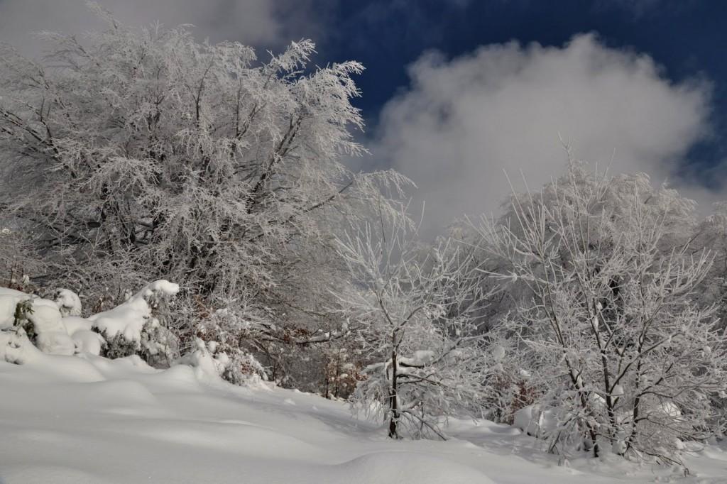 Bieszczadzka kraina śniegu